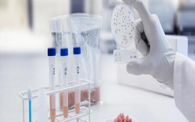 تضمین کیفیت در بخش میکروبشناسی