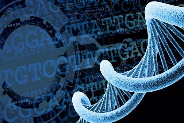 آموزش طراحی پرایمر و  PCR